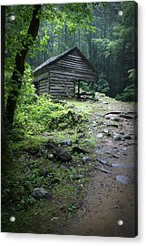 Old Mountain Cabin Acrylic Print by Larry Bohlin