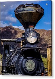 Acrylic Print featuring the mixed media Old N Forgotten by Elaine Malott