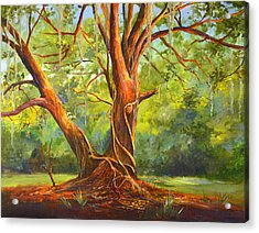 Old Oak With Vines Acrylic Print by AnnaJo Vahle