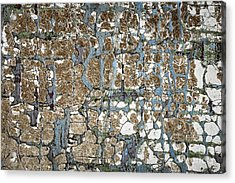 Old Painted Wood Abstract No.5 Acrylic Print