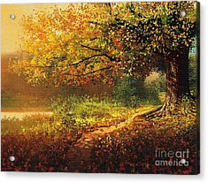 Old Path Acrylic Print by Robert Foster