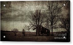 Old Plantation Acrylic Print by Perry Webster