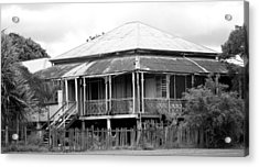 Old Queenslander Acrylic Print by Lee Stickels