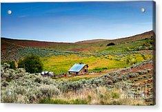 Old Ranch Acrylic Print by Robert Bales