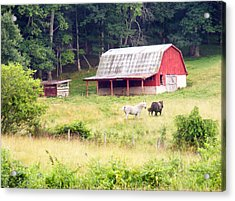 Old Red Barn West Of Brevard Nc Acrylic Print