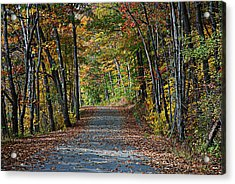Old River Road North Creek  Acrylic Print