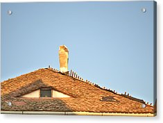 Old Roof With  A Chimney And A Triangular Attic Window Acrylic Print by Ion vincent DAnu