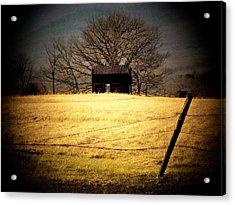 Old Shed Acrylic Print by Michael L Kimble