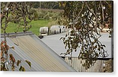 Old Tin Roof  Acrylic Print
