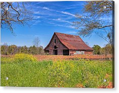 Old Tin Roofed Barn In Spring - Rural Georgia Acrylic Print by Mark E Tisdale
