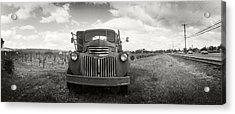 Old Truck In A Field, Napa Valley Acrylic Print by Panoramic Images
