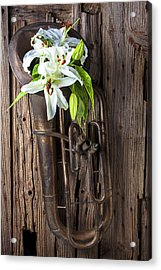 Old Tuba And White Lilies Acrylic Print by Garry Gay