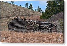Old Turn Of The Century Log Cabin Homestead Art Prints Acrylic Print by Valerie Garner