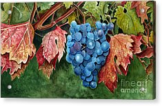 Acrylic Print featuring the painting Old Vine Zinfandel by Debbie Hart