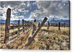 Old Washoe Corral Acrylic Print by Dianne Phelps