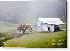 Old Weathered Wooden Barn In Morning Mist Acrylic Print