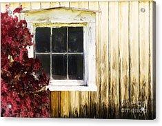 Old White Window Acrylic Print by Martin Dzurjanik