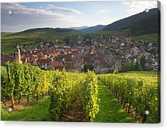 Old Wine Town Of Riquewihr Acrylic Print by Peter Adams
