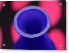 Old Winy Bottle Acrylic Print by Tommytechno Sweden