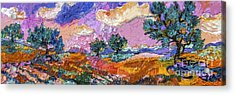 Olive Grooves Provence Panoramic Landscape Acrylic Print