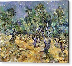 Olive Grove In Autumn  After Van Gogh Acrylic Print