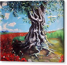Olive Tree In A Sea Of Poppies Acrylic Print
