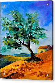 Olive Tree On The Hill Acrylic Print
