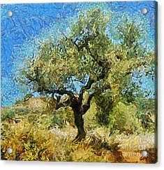 Olive Tree On Van Gogh Manner Acrylic Print