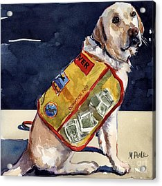 Oliver Rocks The Vest Acrylic Print by Molly Poole