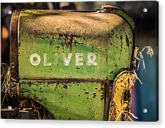Oliver Acrylic Print by Steve Smith