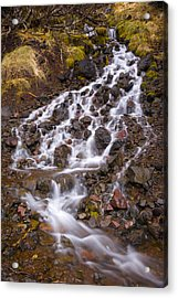 Olympic Cascade 2 Acrylic Print