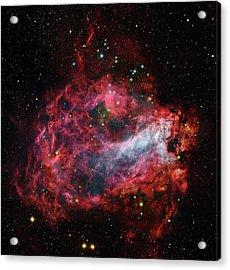 Omega Nebula Acrylic Print by Robert Gendler