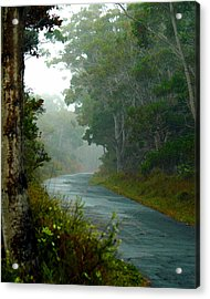 Acrylic Print featuring the photograph On A Country Road by Lehua Pekelo-Stearns
