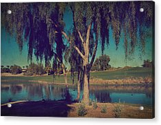 On A Lazy Afternoon Acrylic Print by Laurie Search