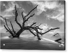On A Misty Morning In Black And White Acrylic Print by Debra and Dave Vanderlaan