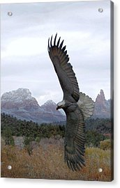 On Eagles Wings Acrylic Print