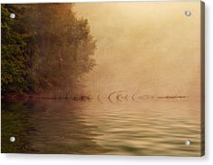 On Golden Pond Acrylic Print by Tom Mc Nemar