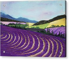 On Lavender Trail Acrylic Print