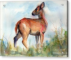 On Second Thought Acrylic Print by Maria's Watercolor