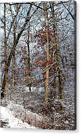 On Such A Winter's Day Acrylic Print