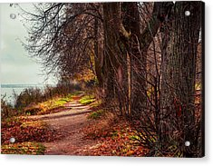 On The Bank Of River Volga Acrylic Print by Jenny Rainbow