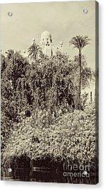 On The Banks Of The Nile Acrylic Print by Nigel Fletcher-Jones