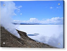 Acrylic Print featuring the photograph On The Edge Of Lake Yellowstone by Michele Myers