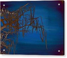 On The Edge Of Sky Acrylic Print by Lenore Senior