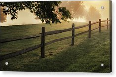 On The Fence Acrylic Print by Bill Wakeley