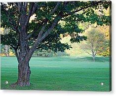 On The Golf Course Acrylic Print by Gloria Merritt