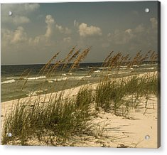 On The Gulf Acrylic Print by Maria Suhr