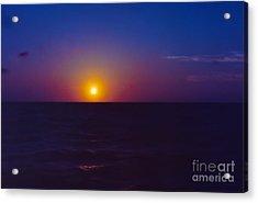 On The Horizon Acrylic Print by Anita Lewis