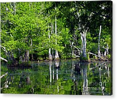 Acrylic Print featuring the photograph On The Lake by Ken Frischkorn