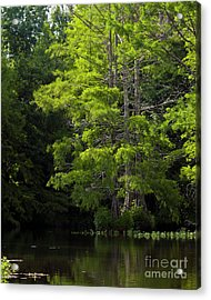 Acrylic Print featuring the photograph On The Lake Two by Ken Frischkorn